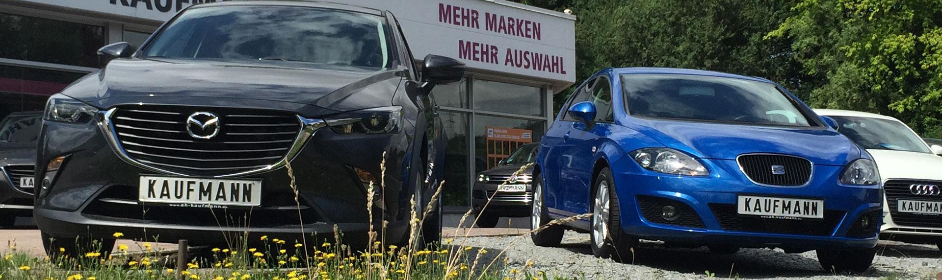 Ihr Mehr-Marken Autohaus für Eisenberg und Umgebung